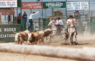 Ennis_postcard_rodeo3