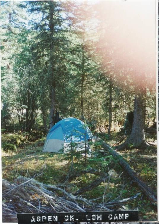 Campsites_1
